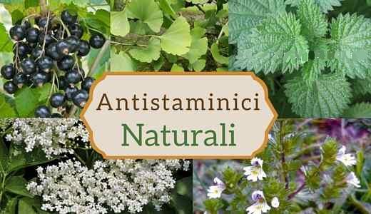 antistaminici-naturali-allergie