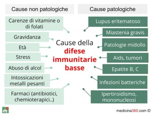 cause-difese-immunitarie-basse_700x5251